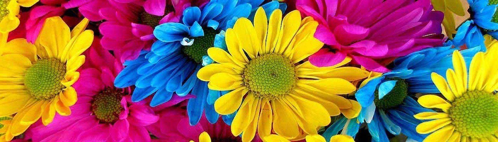 Kollektionen - Blumenmotive