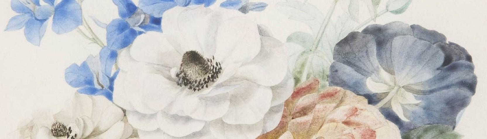 Künstler - Pierre Joseph Redouté